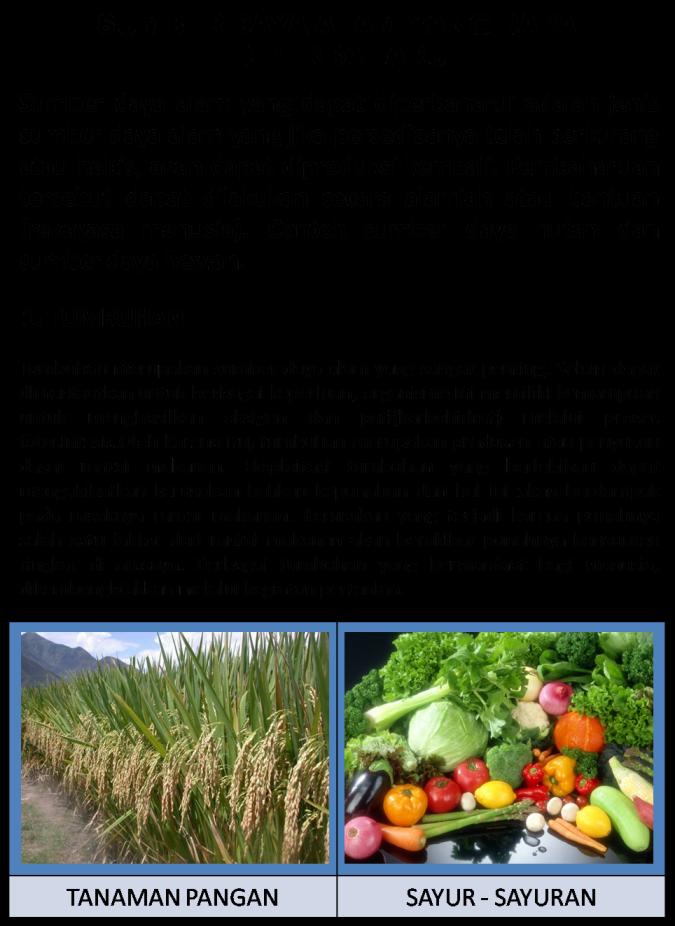 (Pdf) Pengelolaan Sumber Daya Alam Yang Dapat Diperbaharui